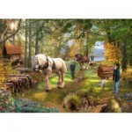 Puzzle  The-House-of-Puzzles-3336 Horse Power
