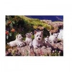 Puzzle  The-House-of-Puzzles-786 Westies