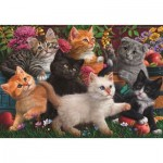 Puzzle  Perre-Anatolian-3327 Kittens Playing