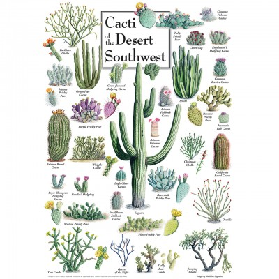 Puzzle Master-Pieces-71972 Cacti of the Desert Southwest