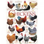 Puzzle   Chicken Quotes