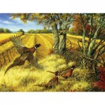 Puzzle  Cobble-Hill-52090 XXL Teile - Linda Picken - Ring-necked Pheasants