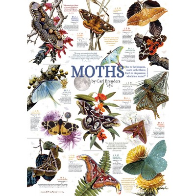 Puzzle Cobble-Hill-80016 Moth Collection