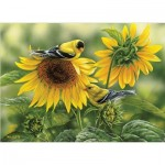 Puzzle  Cobble-Hill-80115 Sunflowers and Goldfinches