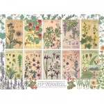 Puzzle  Cobble-Hill-80282 Botanicals by Verneuil
