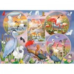 Puzzle   Waterbird Magic