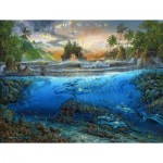 Puzzle   Robert Lyn Nelson - Secret Cove
