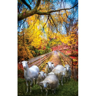 Puzzle Sunsout-30136 Celebrate Life Gallery - Sheep Crossing