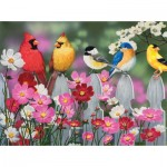 Puzzle  Sunsout-30448 XXL Teile - Songbirds and Cosmos