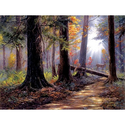 Puzzle Sunsout-40610 Jack Paluh - Peaceful Path