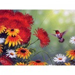 Puzzle  Sunsout-69603 Abraham Hunter - Hummingbird and Red Flower