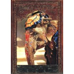 Puzzle   Painted Lady With Frame