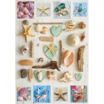 Puzzle  Educa-17658 Muschel-Collage