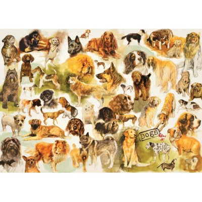Puzzle Jumbo-18596 Collection mit Dogs Poster