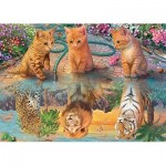 Puzzle  Jumbo-18850 Premium Collection - A Kitten's Dream