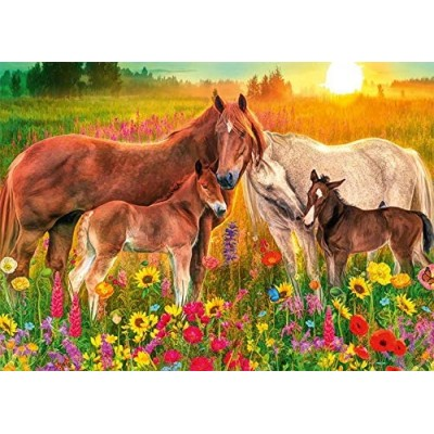 Puzzle Jumbo-18851 Premium Collection - Horses in the Meadow