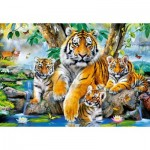 Puzzle  Castorland-104413 Tigers by the Stream