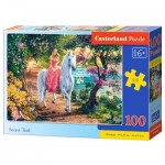 Puzzle  Castorland-111114 Secret Trail