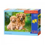 Puzzle  Castorland-13265 Always Together