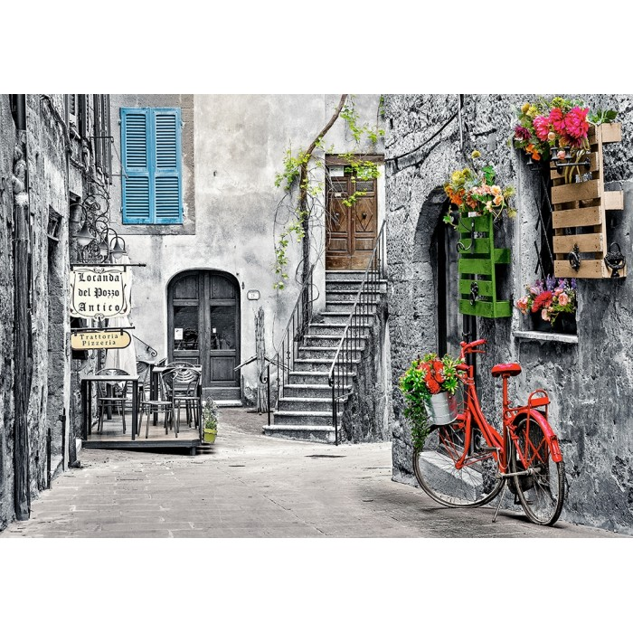 Charming Alley with Red Bicycle