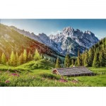 Puzzle  Castorland-53360 Summer in the Alps