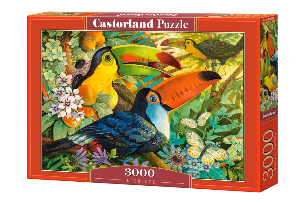 david galchutt interlude 3000 teile castorland puzzle online kaufen. Black Bedroom Furniture Sets. Home Design Ideas