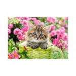 Puzzle   Kitten in Flower Garden