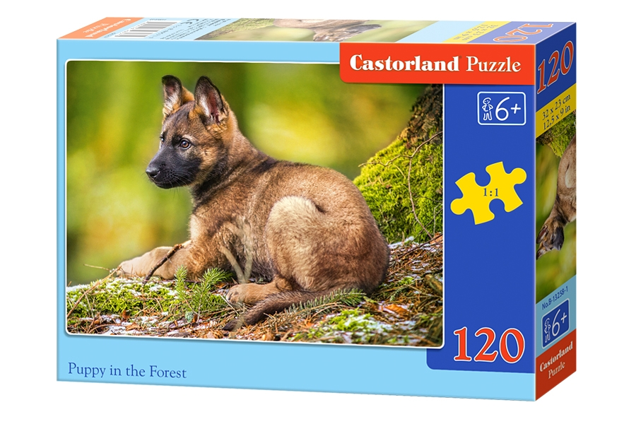puppy in the forest 120 teile castorland puzzle online. Black Bedroom Furniture Sets. Home Design Ideas