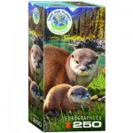 Puzzle   Save the Planet - Otters
