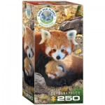 Puzzle   Save the Planet - Red Pandas