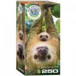 Puzzle   Save the Planet - Sloth
