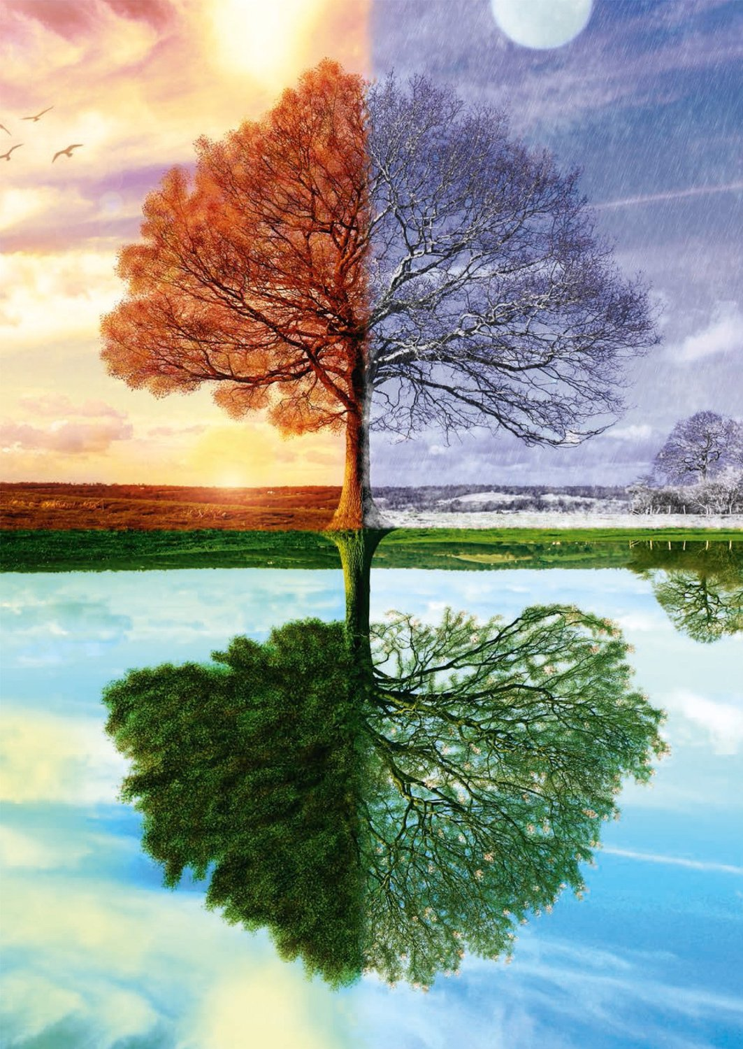 The Impact of Robert Frost