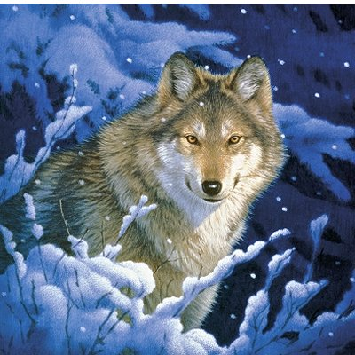Schmidt-Spiele-59999-02 121 Teile Puzzle in Blechdose - Joh Naito: Wolf