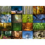 Holzpuzzle - Collage - Bäume