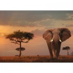 Puzzle  Ravensburger-15159 Nature Edition No 13 - Elefant in Masai Mara National Park
