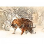 Puzzle  Deico-Games-75987 Tigers