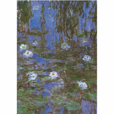 Puzzle DToys-67548-CM06-(69641) Monet: Nymphéas