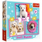 3 Puzzles - Hunde