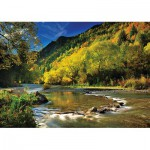 Puzzle  Trefl-10317 Arrow River, Neuseeland
