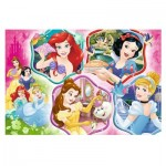 Puzzle  Trefl-16339 Disney Princess