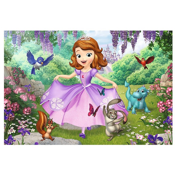 Color Puzzle - Sofia the First