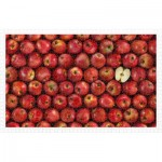 Pintoo-H2006 Puzzle aus Kunststoff - Fruits - Apple