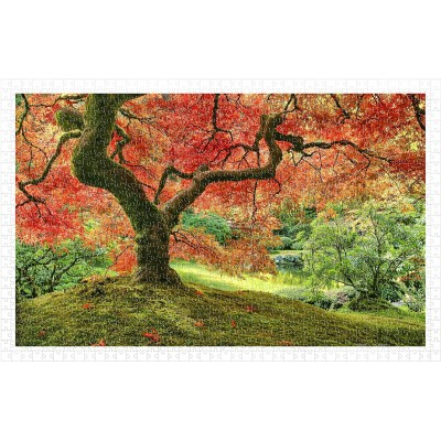 Puzzle Pintoo-H2296 Japanese Garden in Portland