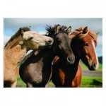 Puzzle  Dino-47226 XXL Teile - Colorful Horses