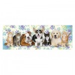 Puzzle   Dogs & Cats