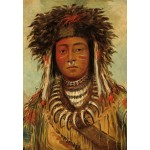 Puzzle   George Catlin: Boy Chief - Ojibbeway, 1843