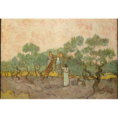 Puzzle Grafika-Kids-00447 XXL Teile - Van Gogh: Women Picking Olives,1889