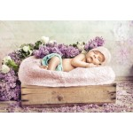 Puzzle  Grafika-Kids-01148 Konrad Bak: Baby sleeping in the Lilac