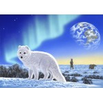 Puzzle  Grafika-Kids-01950 Schim Schimmel - Artic Fox