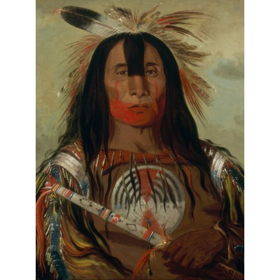 Puzzle Grafika-00236 George Catlin: Stu-mick-o-súcks, Buffalo Bull's Back Fat, Head Chief, Blood Tribe, 1832